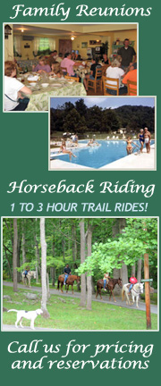 Family Reunions and Horseback Riding at Pisgah View Ranch
