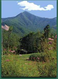 Pisgah View Ranch in the mountains of WNC
